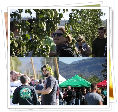 BC Hop Fest 2015 in Abbotsford, BC
